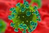 Virussen niet per se nadelig op lange termijn