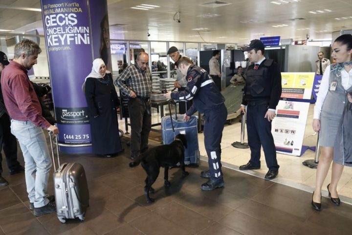 2016-03-23 14:11:49 epa05227282 Turkish police with a K-9 dog search luggage in an area at Ataturk Airport in Istanbul, Turkey, 23 March 2016. Security was tightened across Europe and transport links paralysed after terrorists carried out attacks at Brussels airport and the metro system on 22 March 2016 which claimed multiple lives and injured many others. EPA/SEDAT SUNA