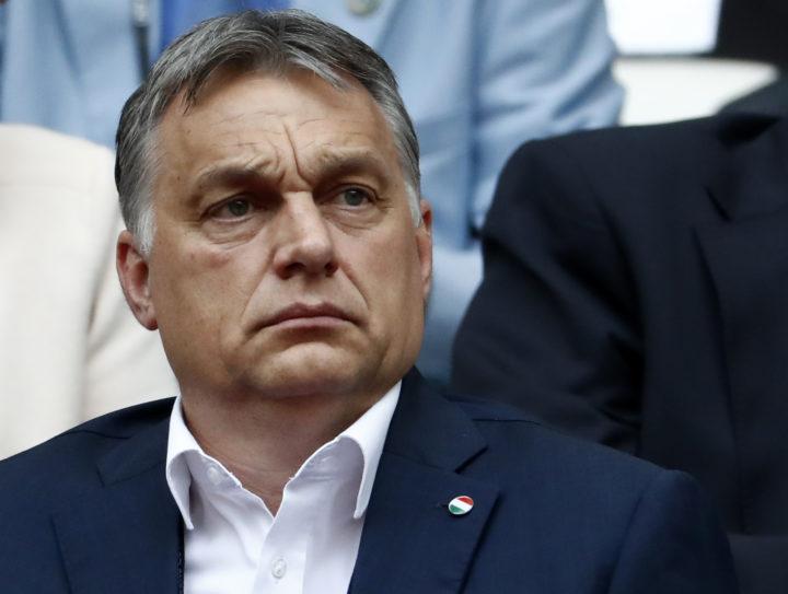 Orbàn tijdens de EK-wedstrijd IJsland-Hongarije - Foto: AFP