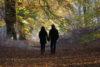 Herfst: niet het verval, maar de oogst