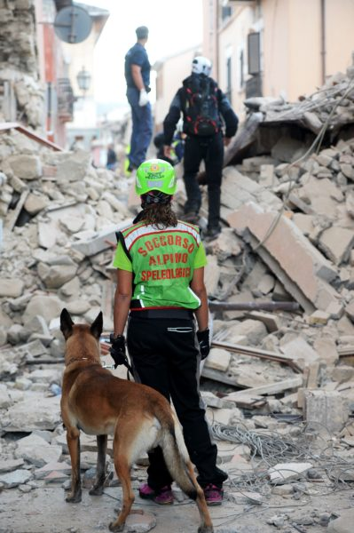 2016-08-24 04:36:53 Rescuers search for victims among the rubble of a house after a strong heartquake hit Amatrice on August 24, 2016. Central Italy was struck by a powerful, 6.2-magnitude earthquake in the early hours, which has killed at least three people and devastated dozens of mountain villages. Numerous buildings had collapsed in communities close to the epicenter of the quake near the town of Norcia in the region of Umbria, witnesses told Italian media, with an increase in the death toll highly likely. / AFP PHOTO / FILIPPO MONTEFORTE