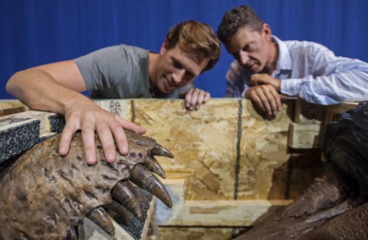 2016-08-26 13:12:10 LEIDEN - Bioloog Freek Vonk (L) en directeur Edwin van Huis van Naturalis bekijken de schedel van T. rex Trix na het openen van de eerste kist. Het skelet van de Tyrannosaurus rex, door Naturalis opgegraven in Montana, Verenigde Staten, wordt opgenomen in de collectie van het museum. Naturalis is het enige museum buiten de VS dat een T. rex bezit. ANP MARTEN VAN DIJL