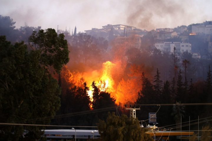 2016-11-24 14:53:12 A picture taken on November 24, 2016 shows a fire raging in the northern Israeli port city of Haifa. Hundreds of Israelis fled their homes on the outskirts of the country's third city Haifa with others trapped inside as firefighters struggled to control raging bushfires, officials said. / AFP PHOTO / AHMAD GHARABLI