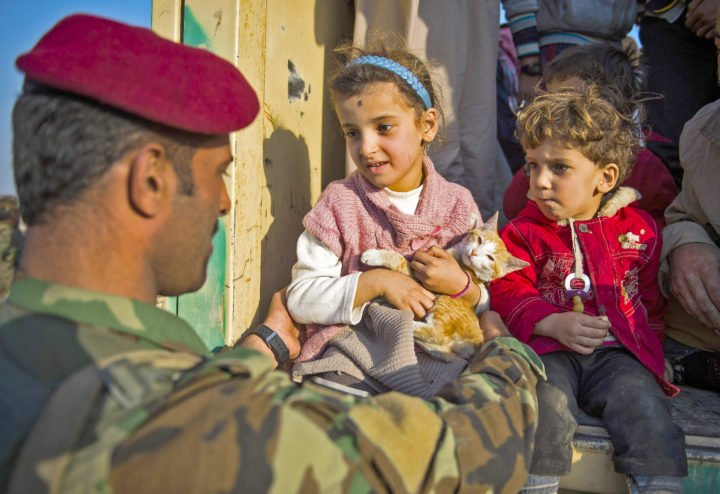 A Peshmerga fighter helps Malak, a 6-year-old displaced Iraqi girl, and her kitten Krish, to get into the lorry of a truck in the village of Shaqouli, about 35 kms east of Mosul, on November 8, 2016, as families who fled their homes in the Samah and Intissar neighbourhoods of the country's second city are heading to camps in Arbil. Iraqi forces are taking part in an operation to recapture Iraq's second city Mosul from Islamic State (IS) group jihadists. / AFP PHOTO / Odd ANDERSEN
