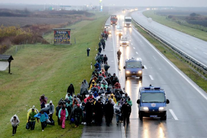 2016-11-12 16:57:41 epa05628456 Hundreds of migrants march from Belgrade to Croatian border on the highway Belgrade-Zagreb near Pecinci 50km from Belgrade, Serbia, 12 November 2016. According to reports, hundreds of migrants from Middle East countries marched through the Serbian capital, apparently trying to move towards Croatia, in order to reach western European countries. EPA/KOCA SULEJMANOVIC