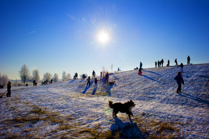 2012-02-04 12:02:12 AMSTERDAM - Met een lekker winters zonnetje genieten veel kinderen van het sleetje rijden in de amsterdamse wijk IJburg. ANP ROBIN UTRECHT