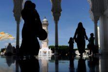 De islamitische irritatie over de evolutietheorie