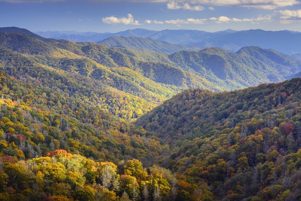 Tennessee The Volunteer State Elsevierweekblad Nl