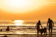 Fraude met Ray-Bans: zo lichten jongeren reisverzekering op