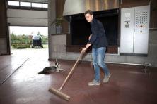 Crematorium Beverwijk: laatste eer voor het paard