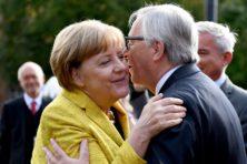 Winst AfD zal juist leiden tot meer 'Europa'