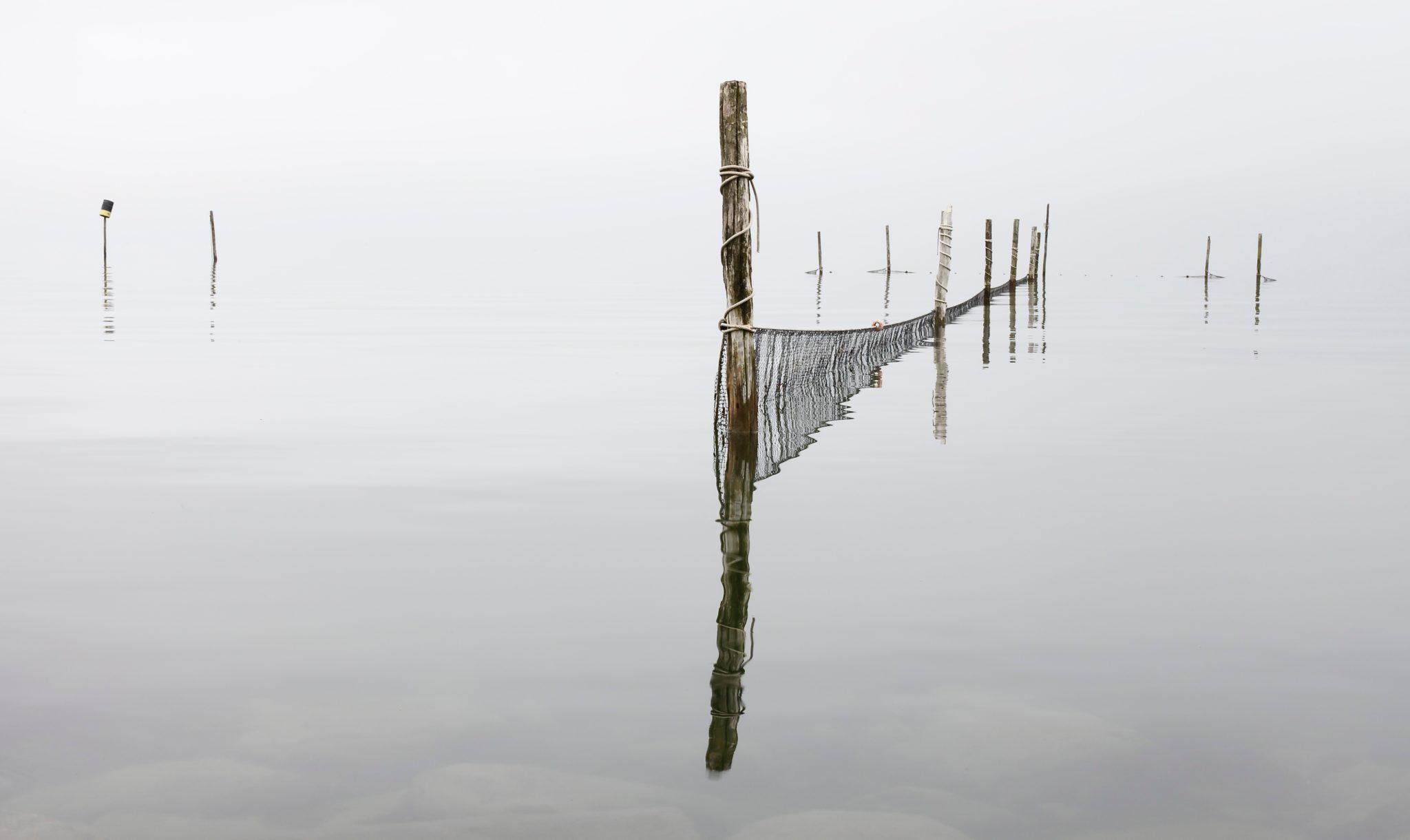 Je proeft het water de wind en de zilte zeelucht elsevierweekblad.nl