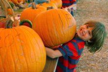 Populair in de herfst: pompoenslingeren