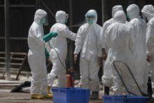 Aziatische vogelgriep baart virologen zorgen