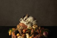 We Are Food: niet kauwen maar kijken