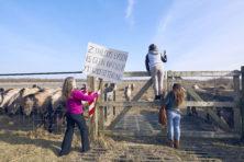 Oostvaardersplassen: de boze burger over de grens?