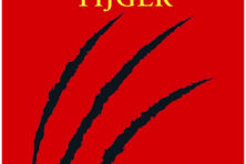 Mooie, kleine roman over dolende tieners (***)