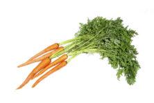 Vergeten groen: wortelloof