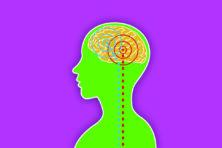 Vrouwelijke hormonen sturen, maar leiden niet