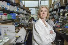 Nobelprijs 'genetische schaar' maakt EU-getreuzel nog pijnlijker