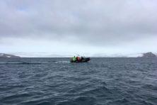 Geladen ijsbergkanonnen