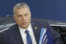 CDA botst publiekelijk met zusterpartij Fidesz