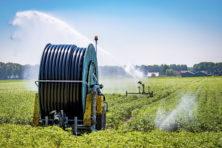 Opmerkelijk hoe goed Nederland de droogte aankan