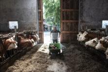 Na 'kalverfraude' kan boer geen goed meer doen