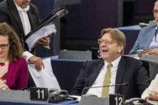Deze europarlementariërs verdienen flink bij
