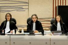 Meer diversiteit in rechtspraak? D66 vergeet mannen