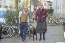 Hoe Harley alle Haagse honden een dienst bewees