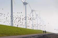 Ondoordacht klimaatbeleid ondermijnt economische voorspoed