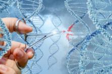 CRISPR-Cas: medicijn van de toekomst?