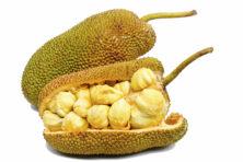 Hoge verwachtingen voor vleesvervanger jackfruit