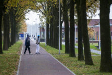 Rutte moet problemen immigratie niet aan ondergeschikten overlaten