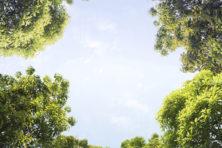 Alles wat u wilt weten over het klimaat in 111 vragen