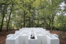 'Interactief kunstwerk' stelt confronterende vragen