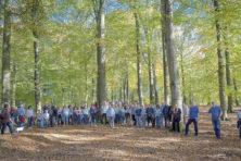 'Groene politiek': Duitse deelstaat kapt bos voor windmolens