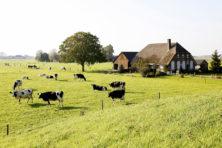 Agrarische sector is zo klein niet
