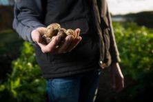 Wat de noodkreet van de boeren zegt over de kloof in onze samenleving