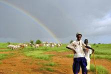 Klimaatverandering pakt positief uit voor de Sahel