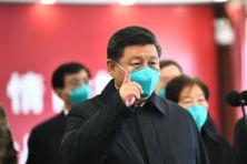 Gelekte informatie toont dat onderzoek in China nodig is