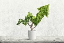 Duurzaam is geen dure hobby meer