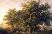 Holtland: toen Noord- en Zuid-Holland één groot bos waren