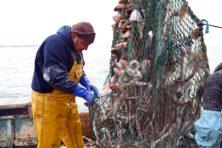 Brexit: visserij is bijzaak in vrijhandelsakkoord