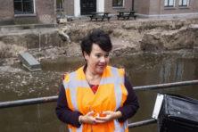 Oververtegenwoordiging PvdA-burgemeesters is ondemocratisch