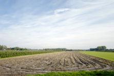 De boer is juist een kampioen in duurzaamheid