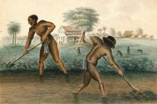 Slavernijverleden in tien verhalen verteld