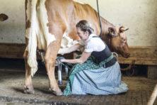 Het vaccin is des koes. En een prik zet je niet