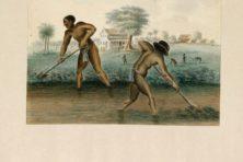 De politieke worsteling met excuses voor het slavernijverleden